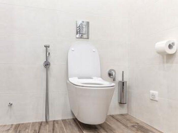 Pourquoi choisir des toilettes suspendues pour sa maison neuve ?